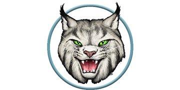 Wildcat Composite