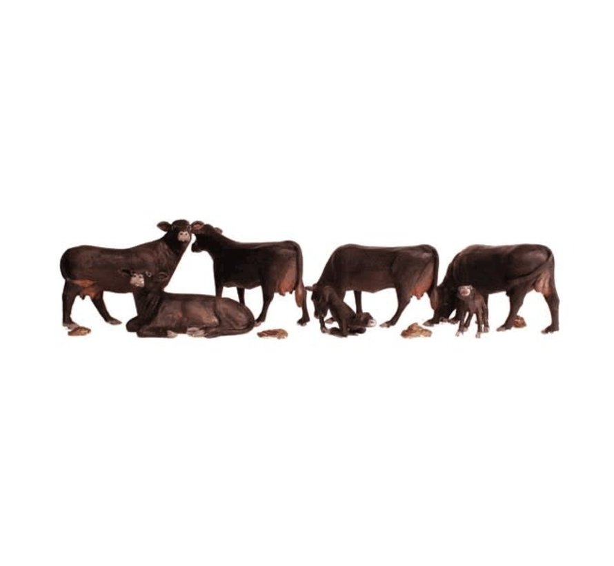 Woodland : HO Black Angus Cows