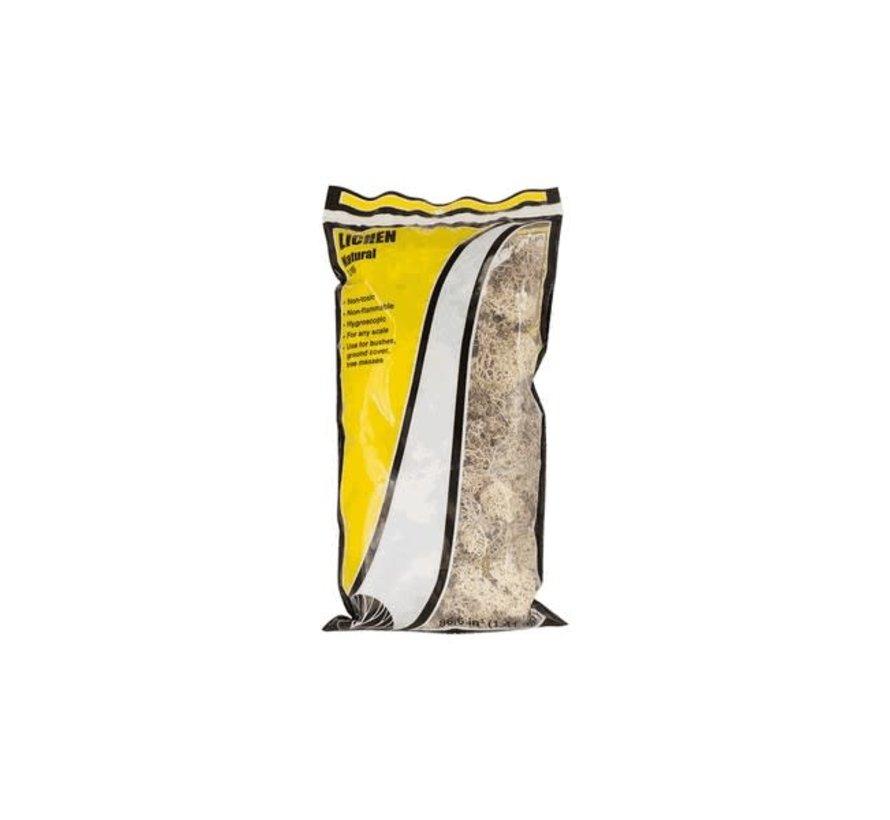 Woodland : Lichen Natural