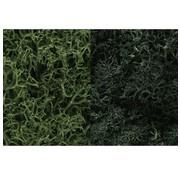 WOODLAND WDS-168 - Woodland : Lichen Dark Green