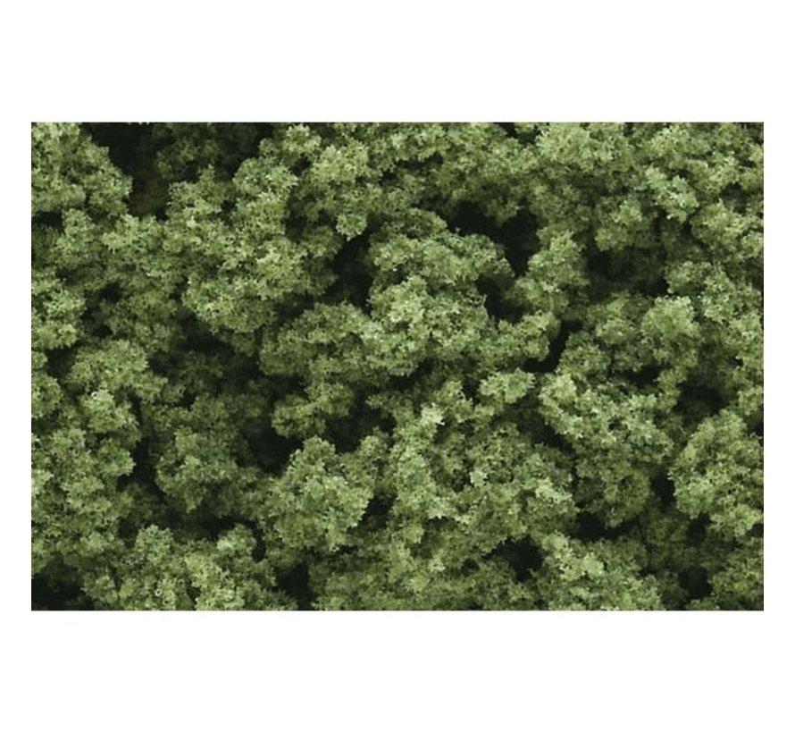 Woodland : Clump Foliage Light Green