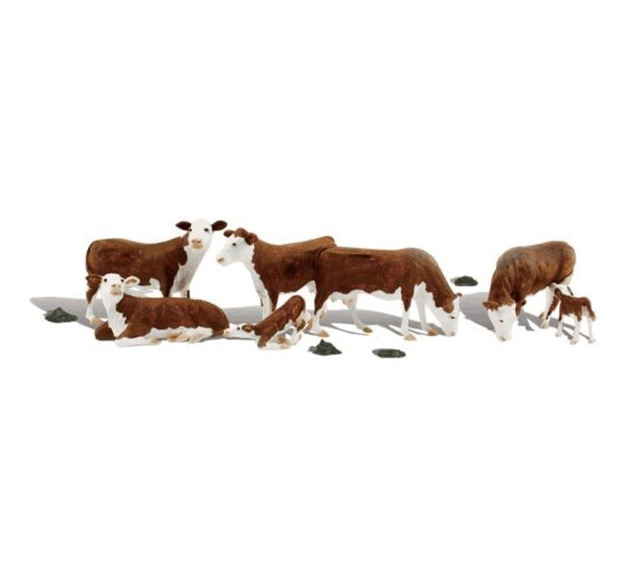 Woodland : N Hereford Cows
