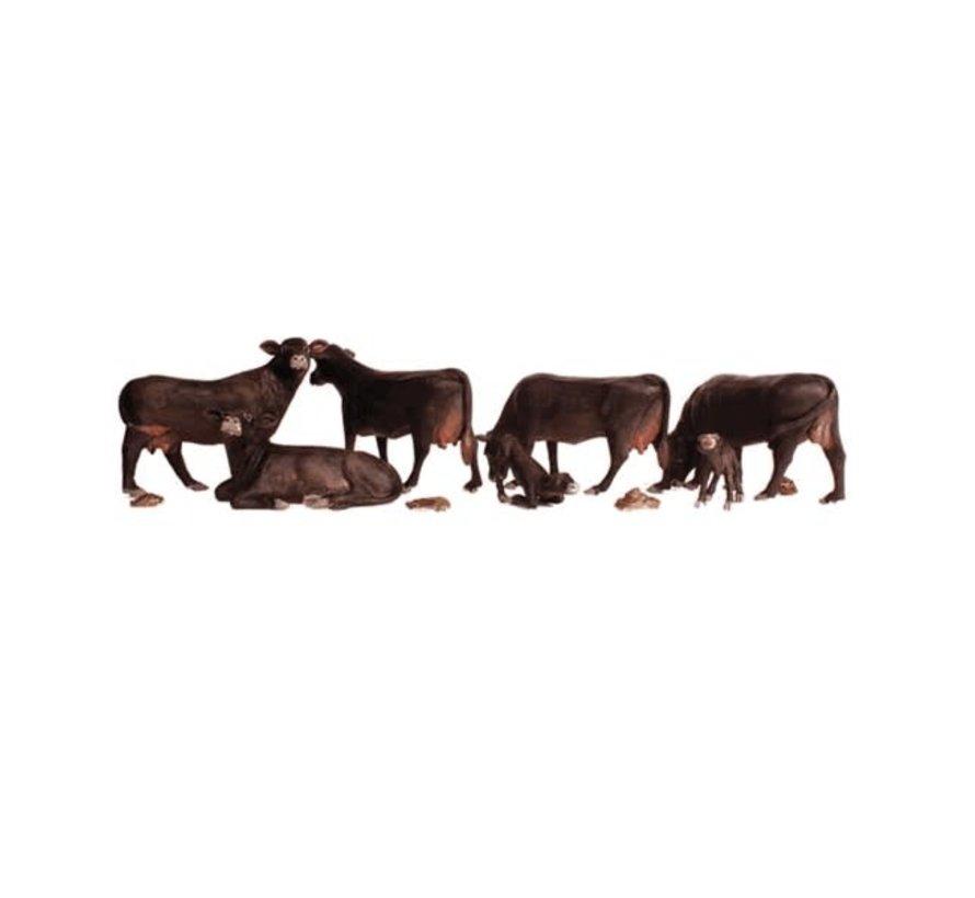 Woodland : N Black Angus Cows
