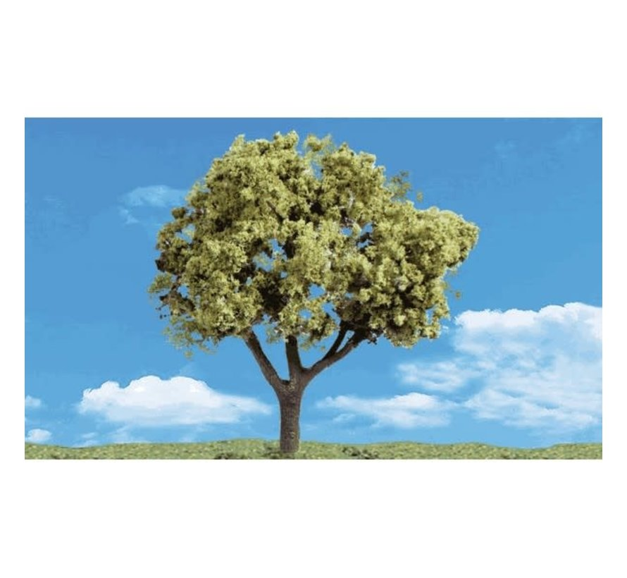 "Woodland : Early Light Trees 4"" - 5"""