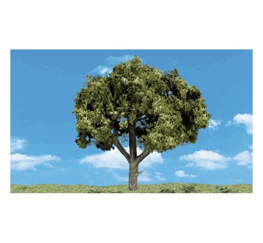 """Woodland : Sun Kissed Trees 5"""" - 6"""""""