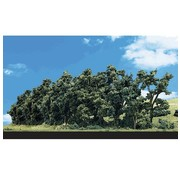 "WOODLAND WDS-3581 - Woodland : Hedge Row Trees 1"" - 2"""