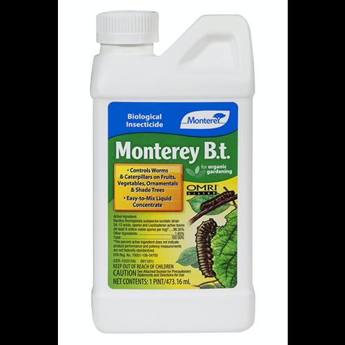Monterey Monterey B.t. Pint (12/Cs)