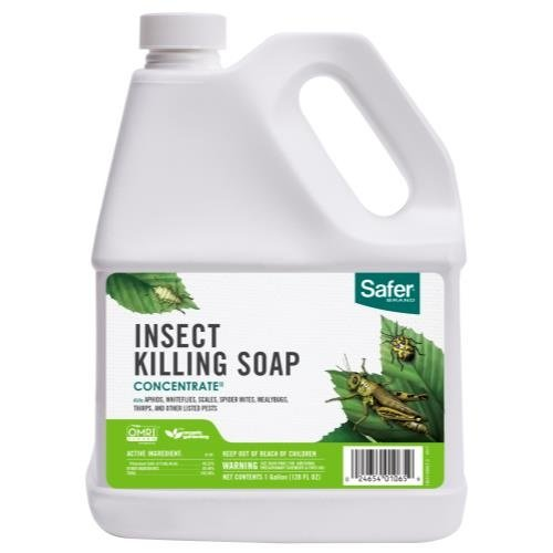 Safer Safer Insect Killing Soap II Conc. Gallon (4/Cs)