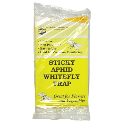 Sticky Aphid Whitefly Trap 5/Pack (80/Cs)