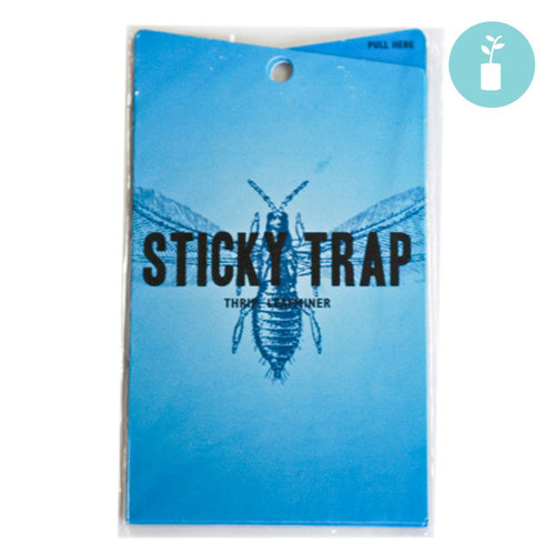 Grow1 Blue Sticky Trap (5-pack)