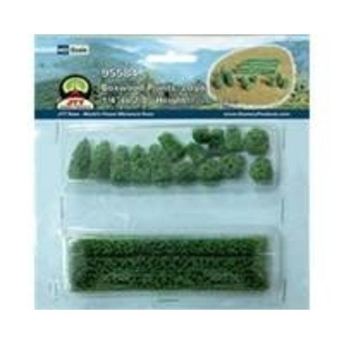 HO Boxwood Plants 20pk