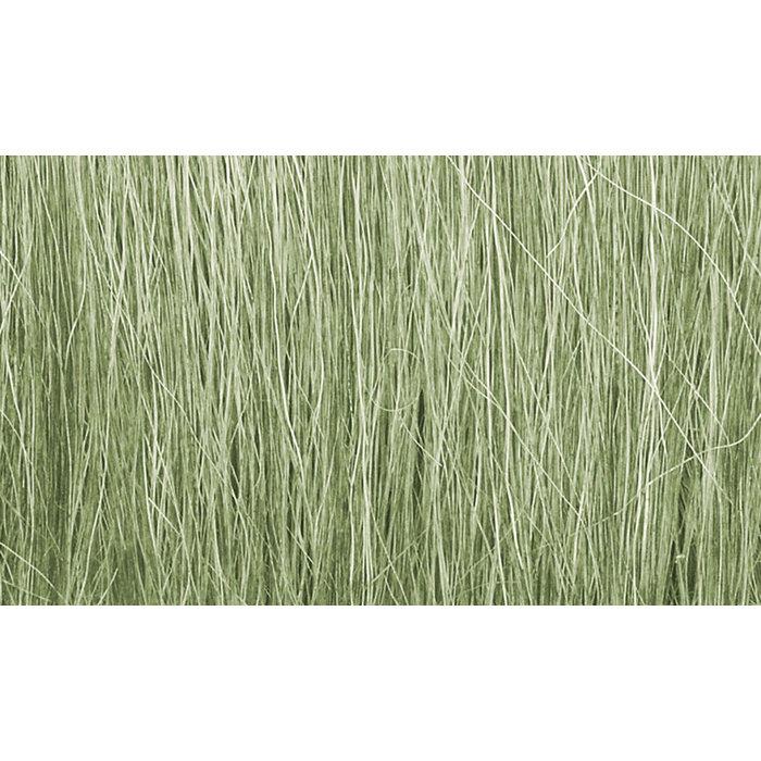 Field Grass/Light Green