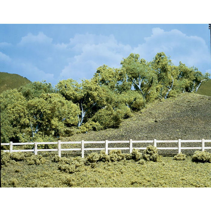"Hedge Row Trees 24-30"""
