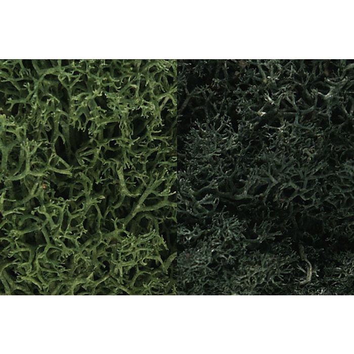 Lichen/Dark Green Mix