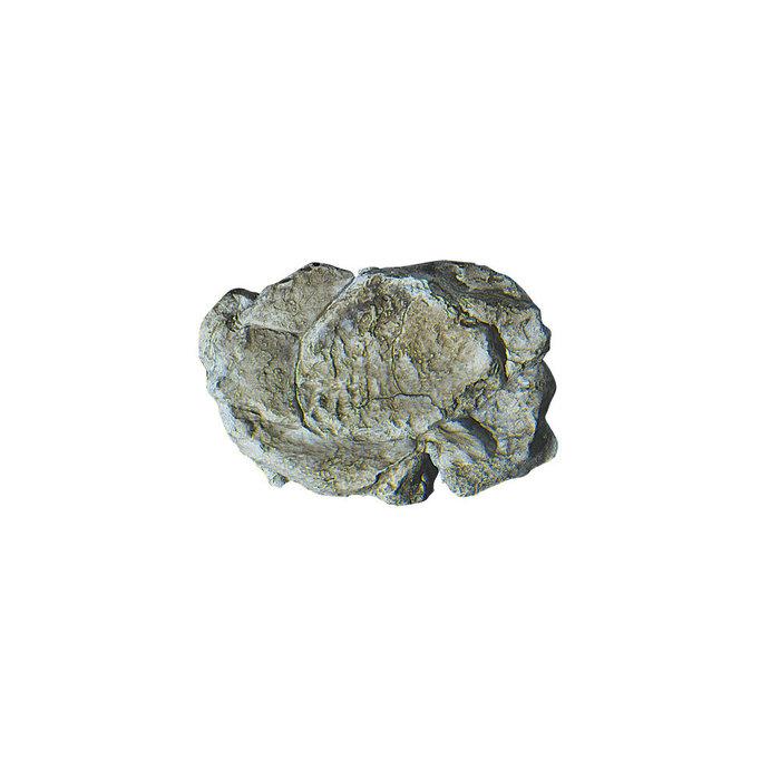 Rock Mold, Wind Rock