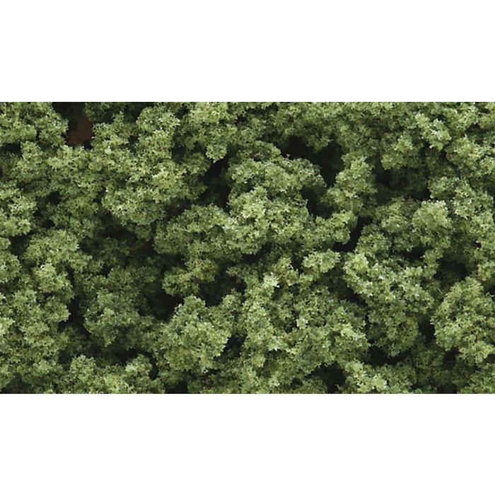 Clump Foliage Light Green/3qt