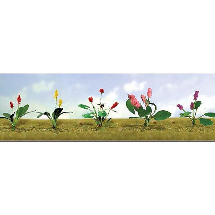 O Flower Plants Assortment #3/10pk