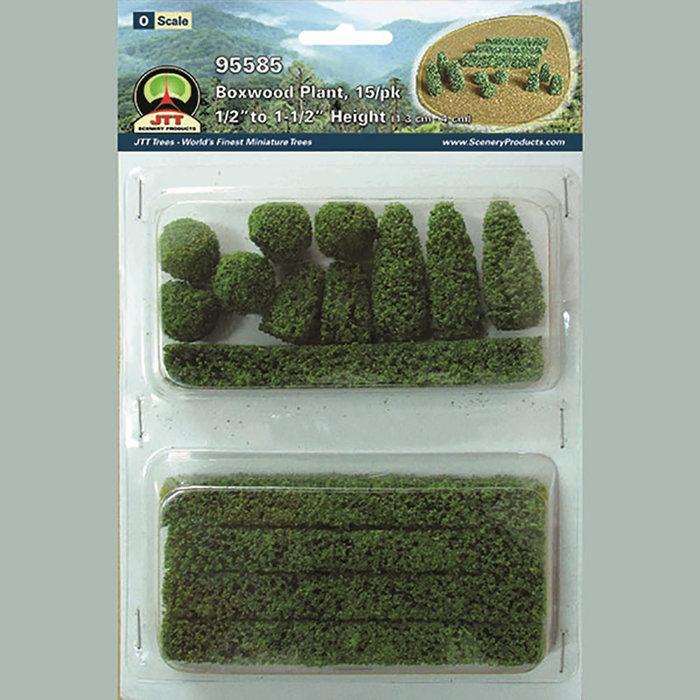 O Boxwood Plants/15pk