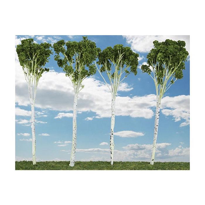 "Aspen Trees Sml 2-3"" 15/"