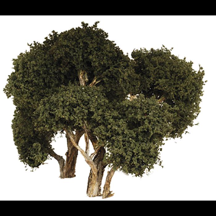 Hardwood Tree Large 3/