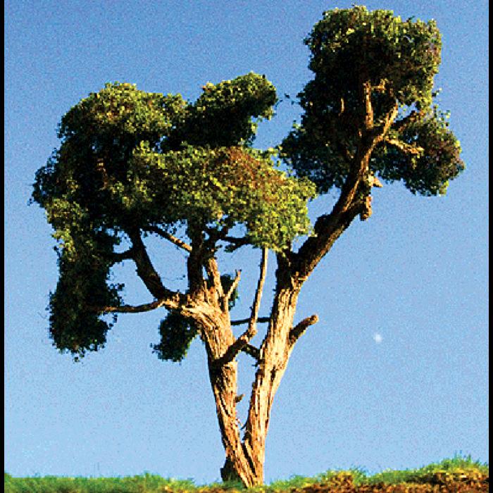 Hardwood Tree X-Large 2/