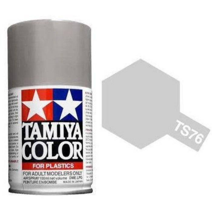 Spray TS-76 Mica Silver