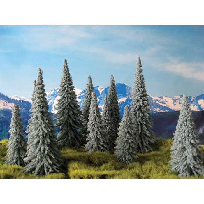"Spruce Trees Med 5"" 20/"