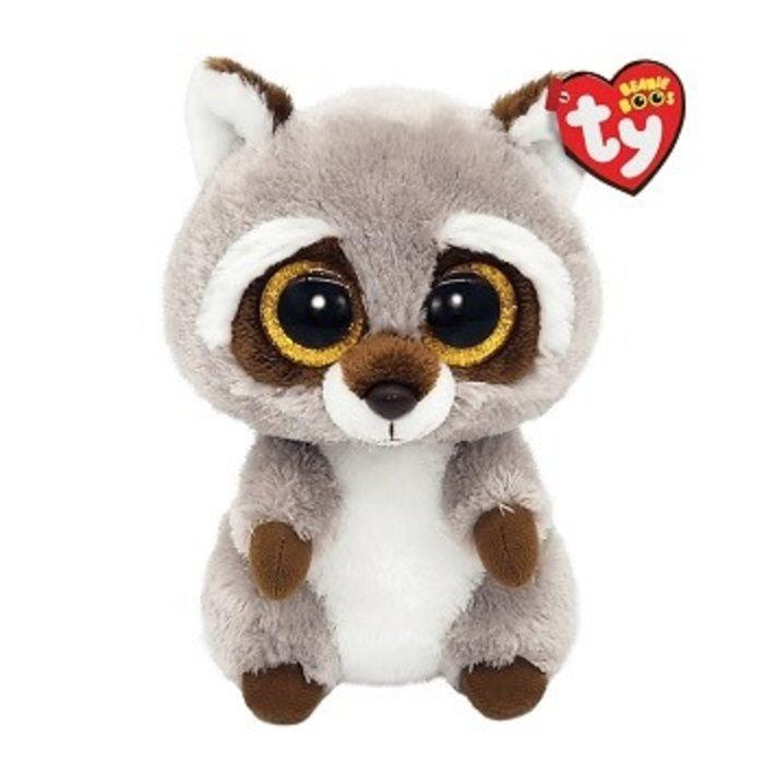 Oakie the Grey Raccoon