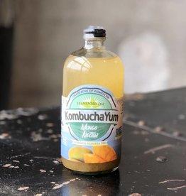 KombuchaYum Mango Nector Kombucha