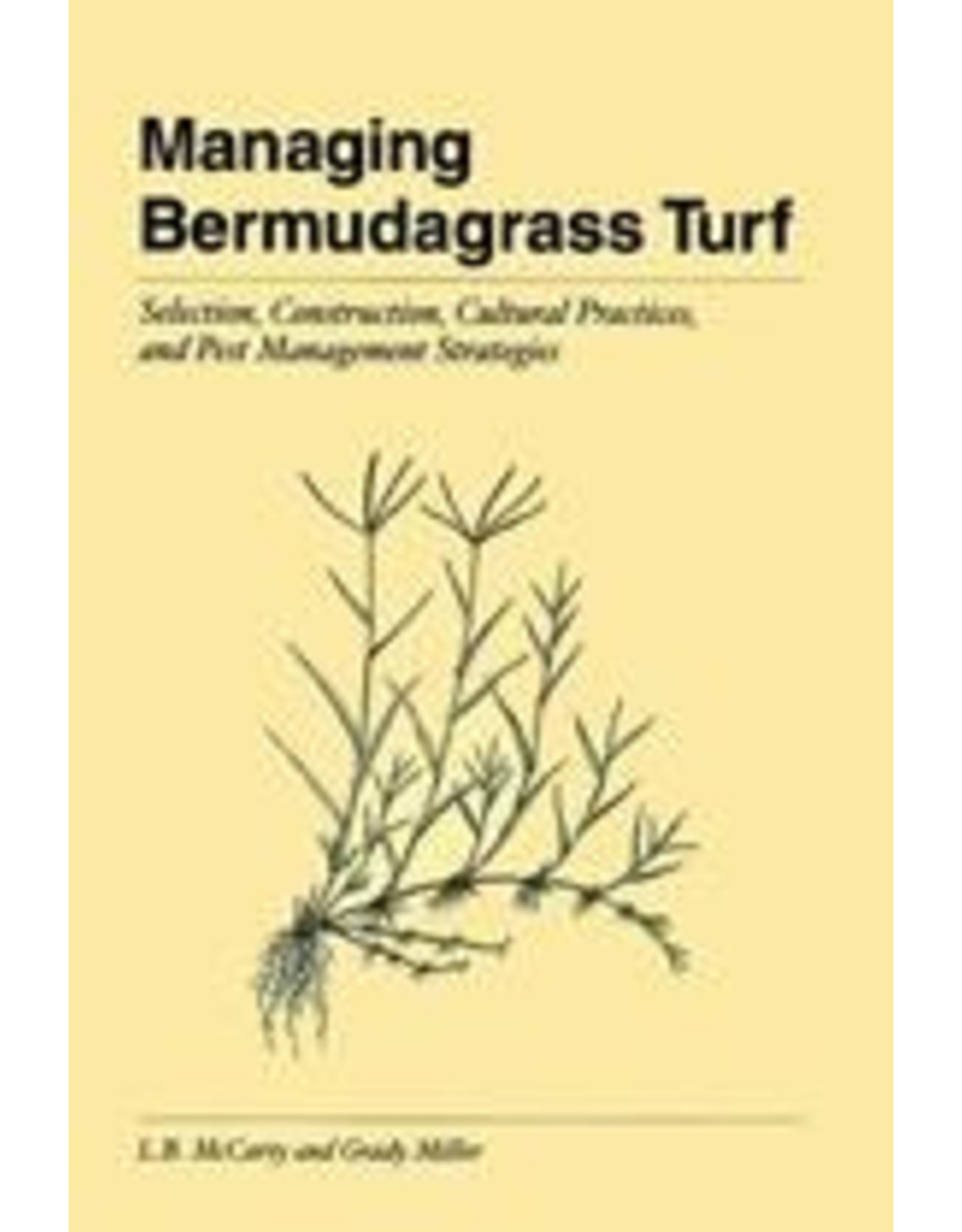 Managing Bermudagrass Turf