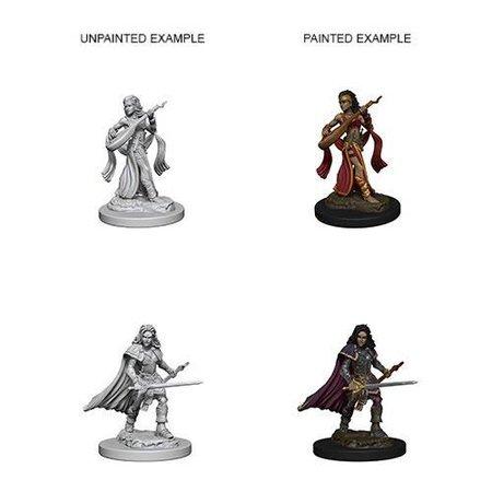 Pathfinder Battles Unpainted Minis - Human Bard (Female)