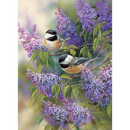 1000 - Chickadees and Lilacs