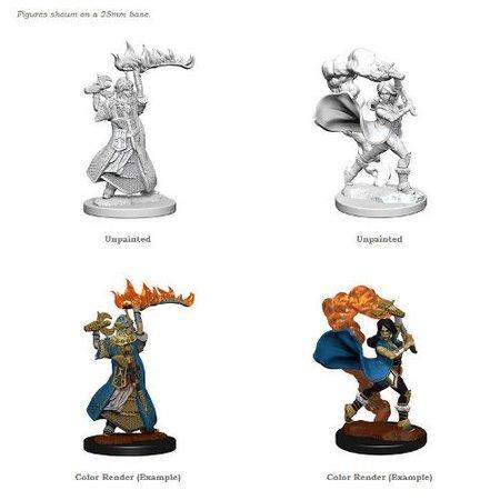 Pathfinder Battles Unpainted Minis - Human Cleric (Female)