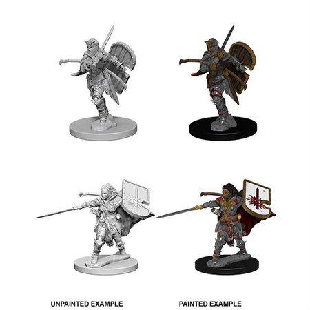 Pathfinder Battles Unpainted Minis - Human Paladin (Female)