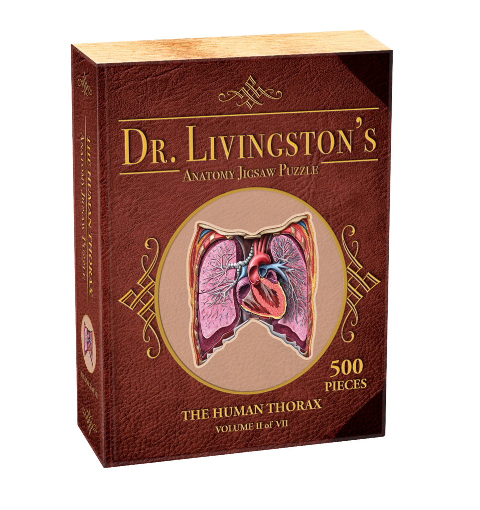 500 - Dr. Livingston's Anatomy Jigsaw Puzzles: Volume II - The Human Thorax