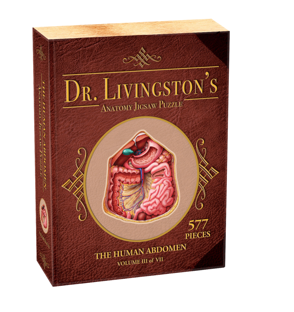 577 - Dr. Livingston's Anatomy Jigsaw Puzzles: Volume III - The Human Abdomen