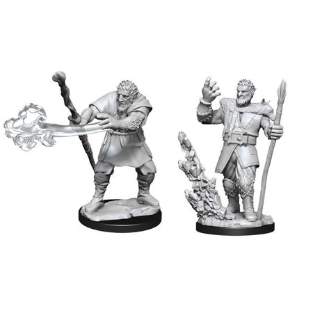 D&D Unpainted Minis - Firbolg Druid Male