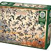 1000 - Ducks of North America