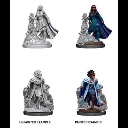 D&D Unpainted Minis - Tiefling Sorcerer (Female)