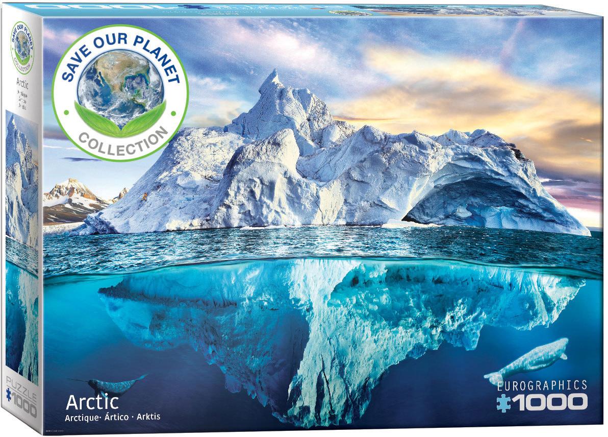 1000 - Arctic