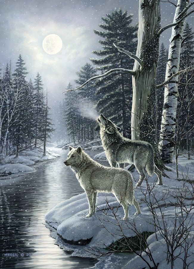1000 - Wolves by Moonlight