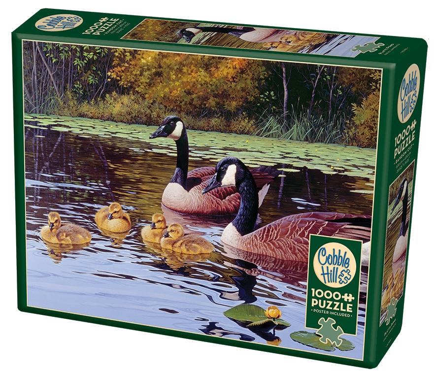 1000 - Platts Pond