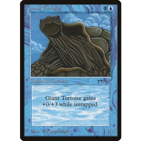 Giant Tortoise (HP)