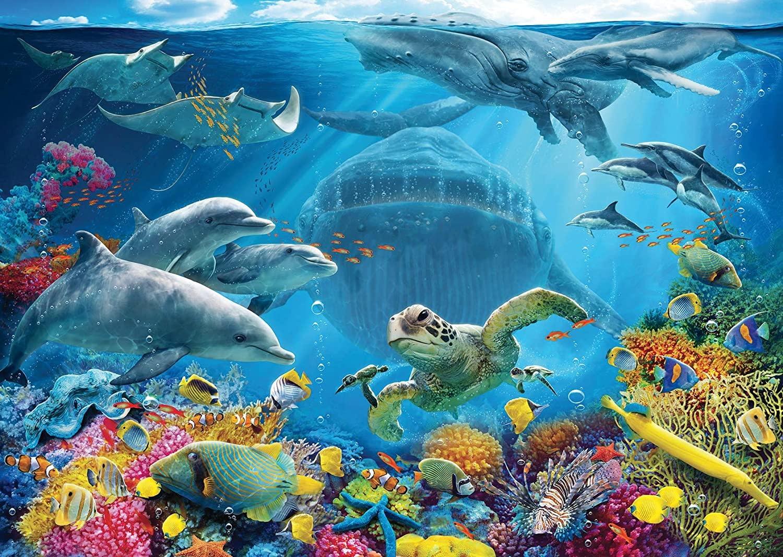 300 - Life Underwater