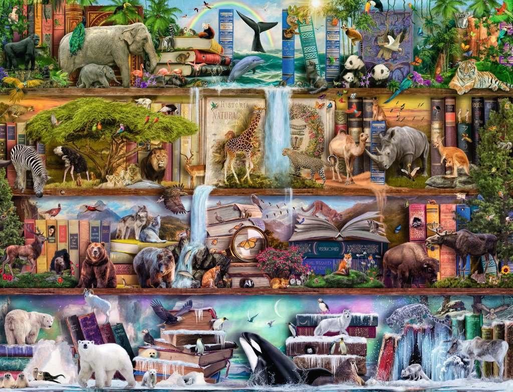 2000 - Wild Kingdom Shelves