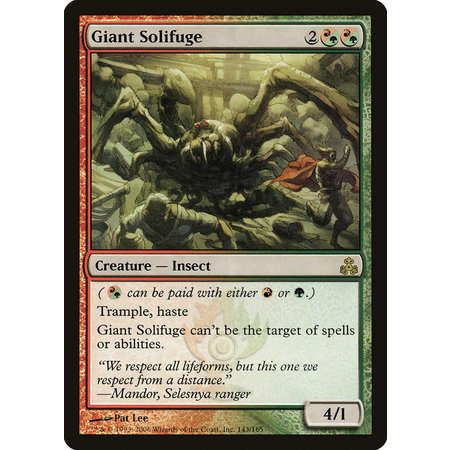 Giant Solifuge
