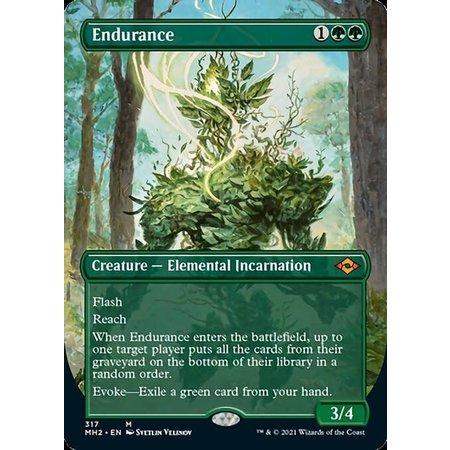 Endurance - Foil