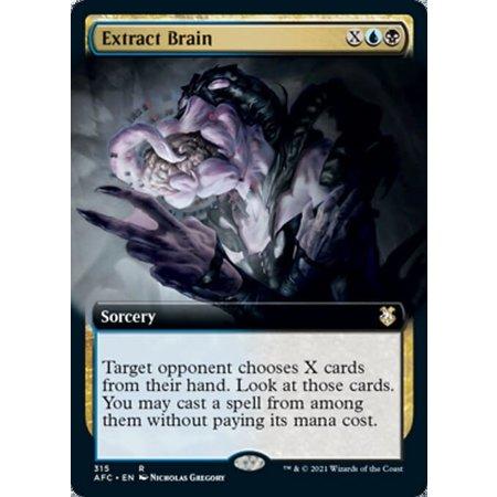 Extract Brain