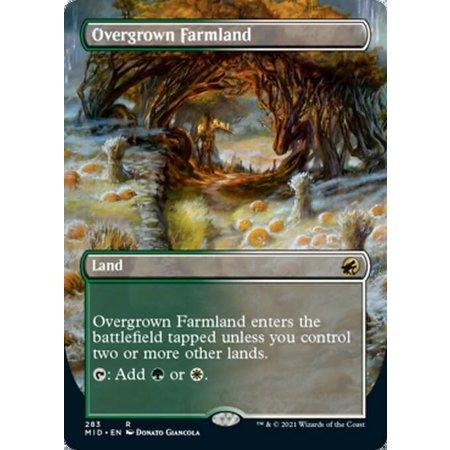 Overgrown Farmland - Foil