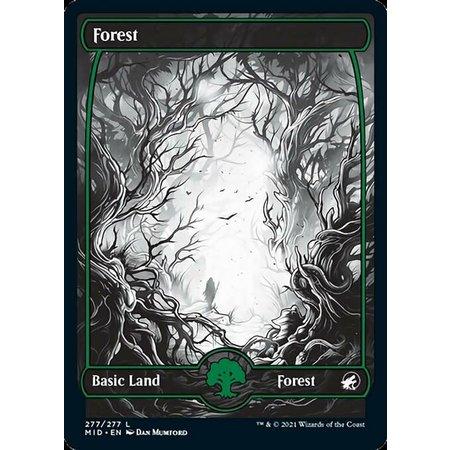 Forest (277) - Full Art - Foil